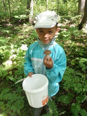 Безопасные грибы